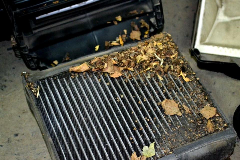 Забитое мусором и листьями радиаторное устройство