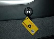 Как защитить свой автомобиль от угона: все о замках на КПП