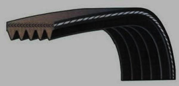 Поликлиновый ремешок в разрезе